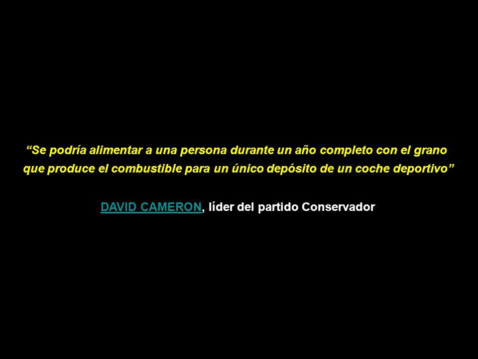 MERCADOS ALIMENTARIOS ARMA DE DESTRUCCIÓN MASIVA II