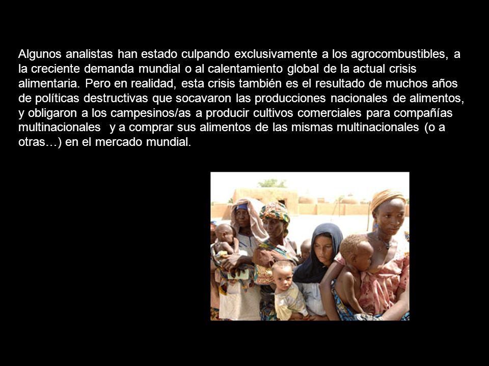 Una perfecta tormenta de escasez de alimentos, calentamiento global, incremento astronómico de los precios del petróleo y la explosión demográfica mundial esta llevando a la humanidad a la mayor crisis del siglo XXI elevando los precios de los alimentos y extendiendo el hambre de las áreas rurales a la ciudades.