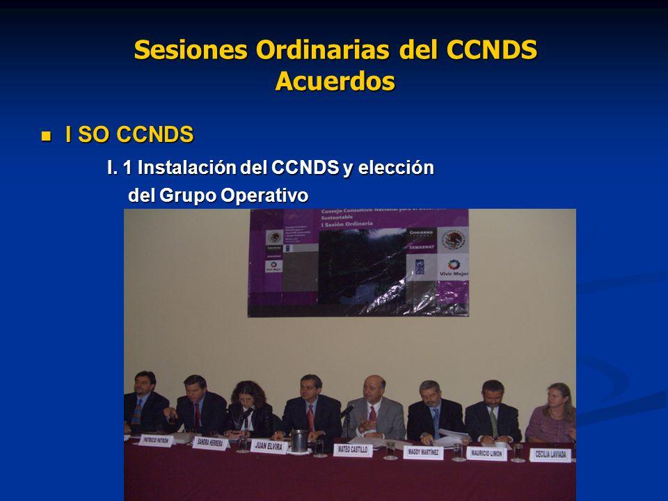 Sesiones Ordinarias del CCNDS Reuniones / Acuerdos II SO CCNDS II SO CCNDS