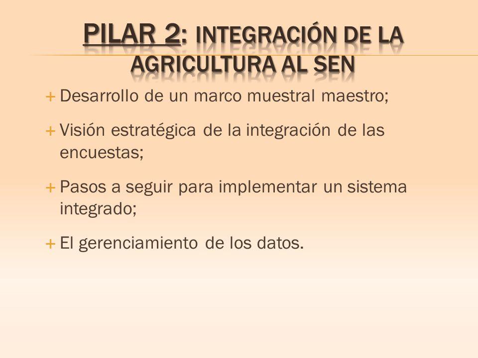 Desarrollo de un marco muestral maestro; Visión estratégica de la integración de las encuestas; Pasos a seguir para implementar un sistema integrado; El gerenciamiento de los datos.