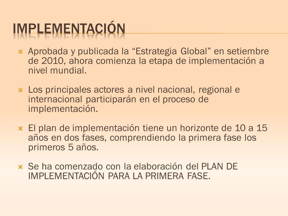 Aprobada y publicada la Estrategia Global en setiembre de 2010, ahora comienza la etapa de implementación a nivel mundial.