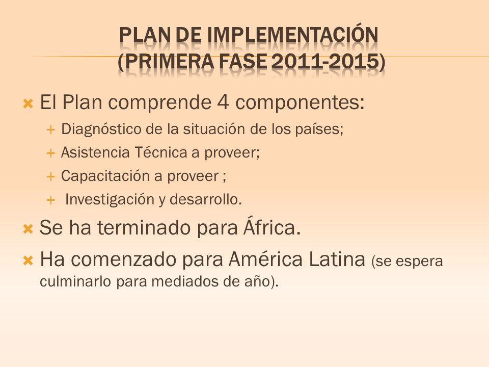 El Plan comprende 4 componentes: Diagnóstico de la situación de los países; Asistencia Técnica a proveer; Capacitación a proveer ; Investigación y desarrollo.