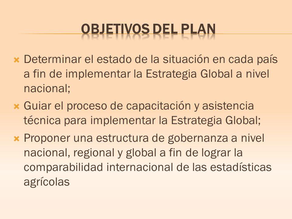 Determinar el estado de la situación en cada país a fin de implementar la Estrategia Global a nivel nacional; Guiar el proceso de capacitación y asistencia técnica para implementar la Estrategia Global; Proponer una estructura de gobernanza a nivel nacional, regional y global a fin de lograr la comparabilidad internacional de las estadísticas agrícolas