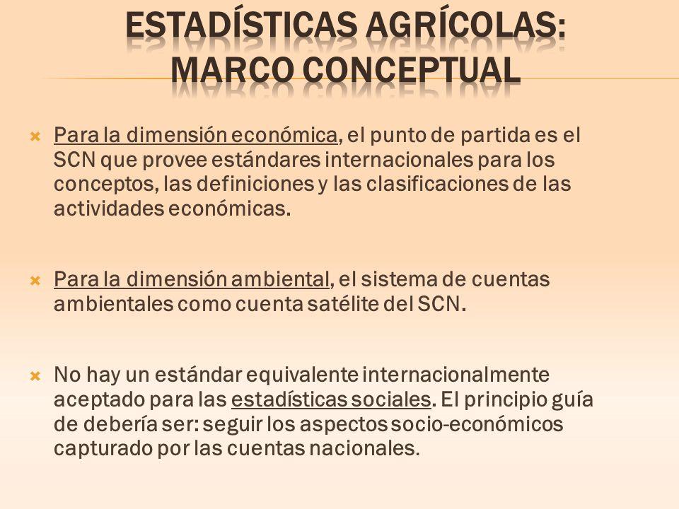 Para la dimensión económica, el punto de partida es el SCN que provee estándares internacionales para los conceptos, las definiciones y las clasificaciones de las actividades económicas.