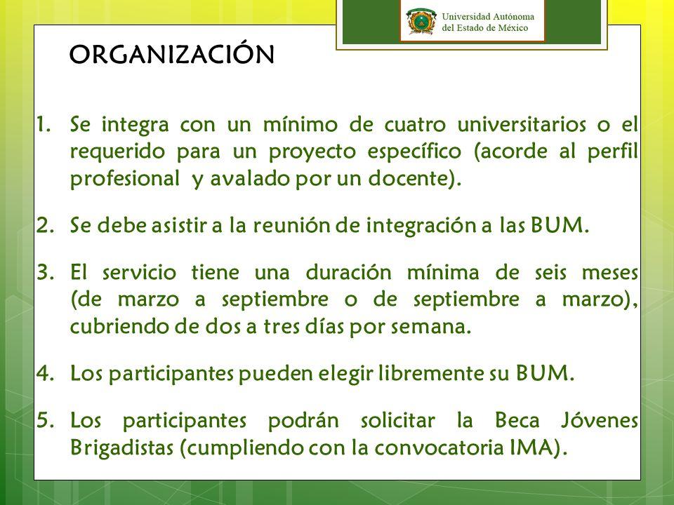 Integrar universitarios en Servicio Social Comunitario de diferentes carreras profesionales, para trabajar en equipo con las comunidades vulnerables del Estado de México.