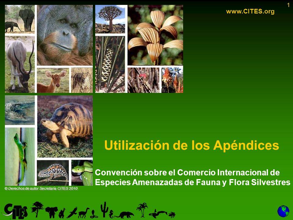 1 Convención sobre el Comercio Internacional de Especies Amenazadas de Fauna y Flora Silvestres Utilización de los Apéndices 1 www.CITES.org © Derecho
