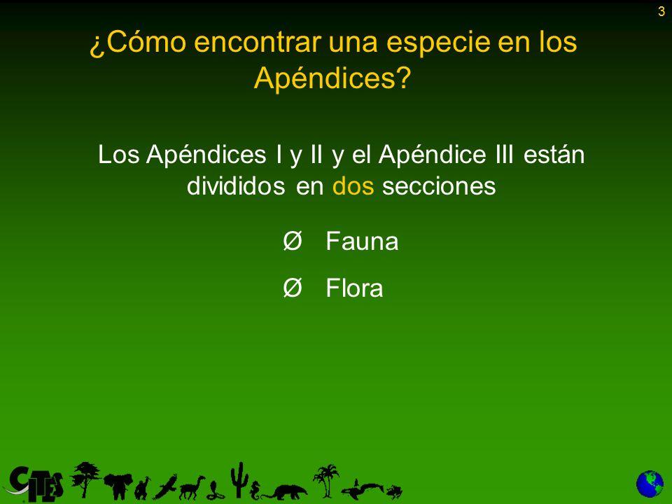 3 Los Apéndices I y II y el Apéndice III están divididos en dos secciones Ø Ø Fauna Ø Ø Flora ¿Cómo encontrar una especie en los Apéndices? 3