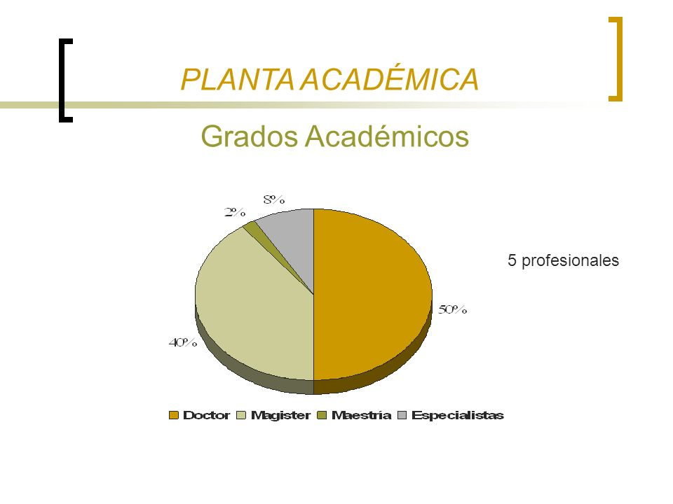 PLANTA ACADÉMICA Grados Académicos 5 profesionales