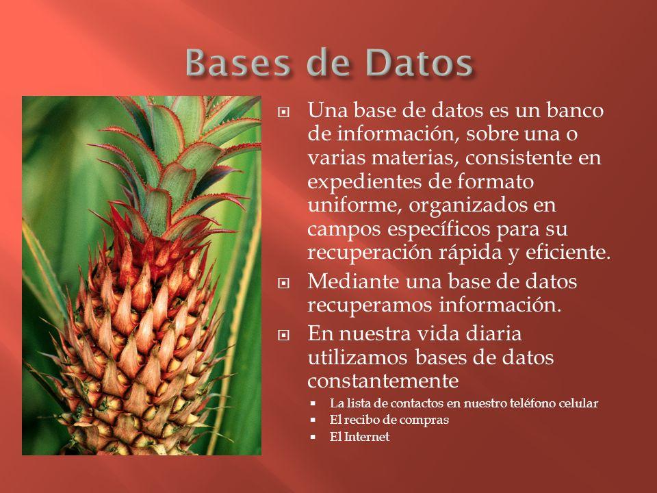 Una base de datos es un banco de información, sobre una o varias materias, consistente en expedientes de formato uniforme, organizados en campos espec