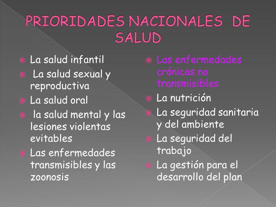 La salud infantil La salud sexual y reproductiva La salud oral la salud mental y las lesiones violentas evitables Las enfermedades transmisibles y las