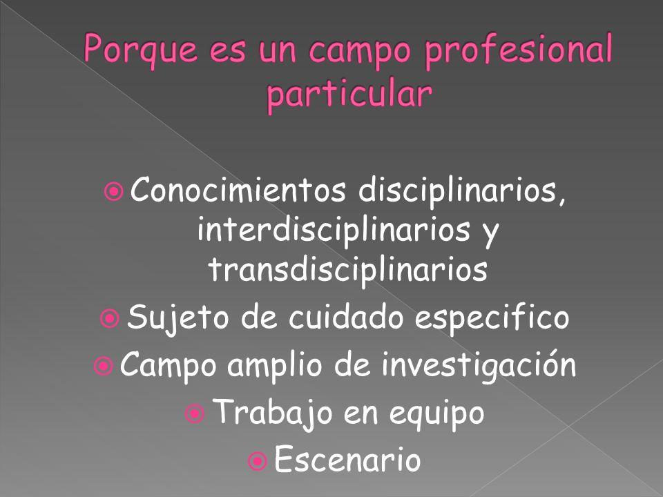 Conocimientos disciplinarios, interdisciplinarios y transdisciplinarios Sujeto de cuidado especifico Campo amplio de investigación Trabajo en equipo E