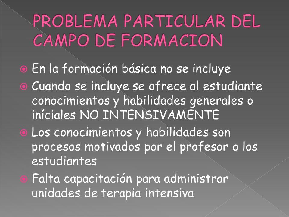 En la formación básica no se incluye Cuando se incluye se ofrece al estudiante conocimientos y habilidades generales o iníciales NO INTENSIVAMENTE Los