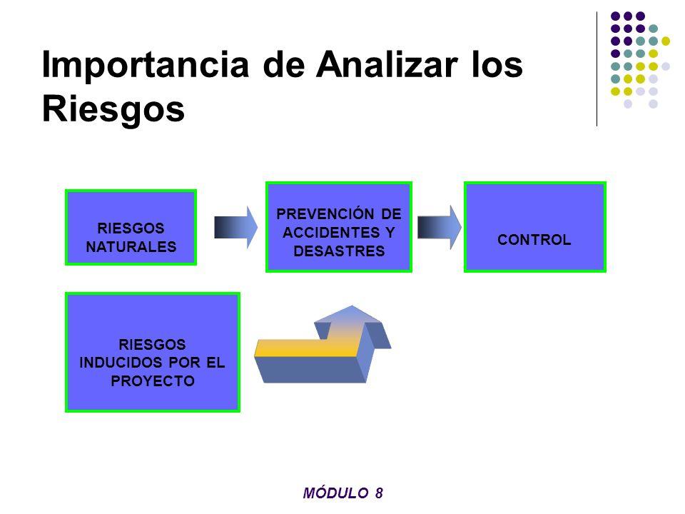 Importancia de Analizar los Riesgos RIESGOS NATURALES RIESGOS INDUCIDOS POR EL PROYECTO PREVENCIÓN DE ACCIDENTES Y DESASTRES CONTROL MÓDULO 8