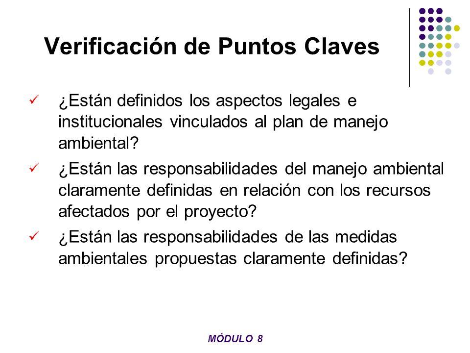 Verificación de Puntos Claves ¿Están definidos los aspectos legales e institucionales vinculados al plan de manejo ambiental? ¿Están las responsabilid