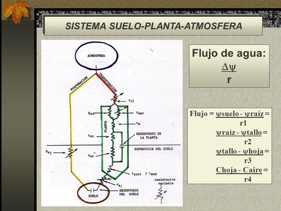 SISTEMA SUELO-PLANTA-ATMOSFERA Flujo de agua: r Flujo = suelo - raíz = r1 raíz - tallo = r2 tallo - hoja = r3 Choja - Caire = r4