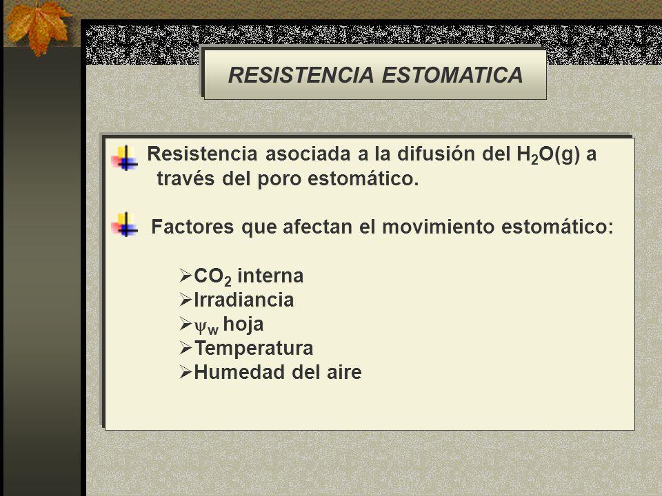 RESISTENCIA ESTOMATICA Resistencia asociada a la difusión del H 2 O(g) a través del poro estomático. Factores que afectan el movimiento estomático: CO