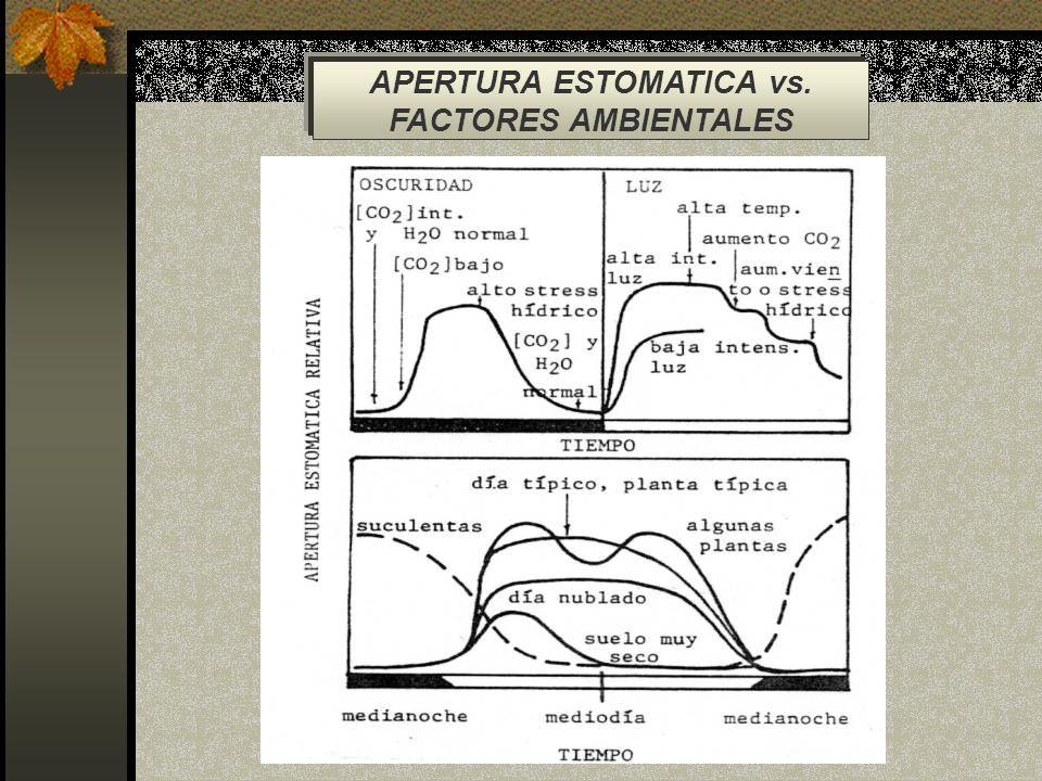 APERTURA ESTOMATICA vs. FACTORES AMBIENTALES
