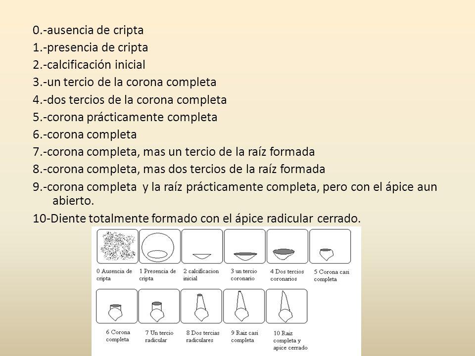 0.-ausencia de cripta 1.-presencia de cripta 2.-calcificación inicial 3.-un tercio de la corona completa 4.-dos tercios de la corona completa 5.-coron
