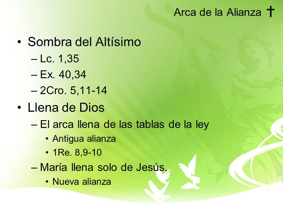 Arca de la Alianza Sombra del Altísimo –Lc.1,35 –Ex.