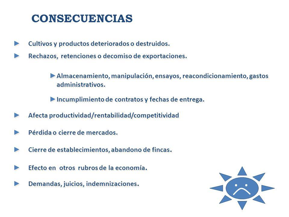 CONSECUENCIAS Cultivos y productos deteriorados o destruidos.