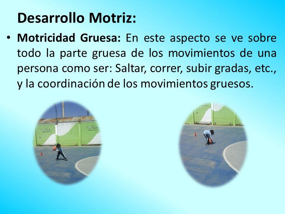 Desarrollo Motriz: Motricidad Gruesa: En este aspecto se ve sobre todo la parte gruesa de los movimientos de una persona como ser: Saltar, correr, sub