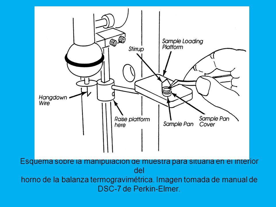 Esquema sobre la manipulación de muestra para situarla en el interior del horno de la balanza termogravimétrica.