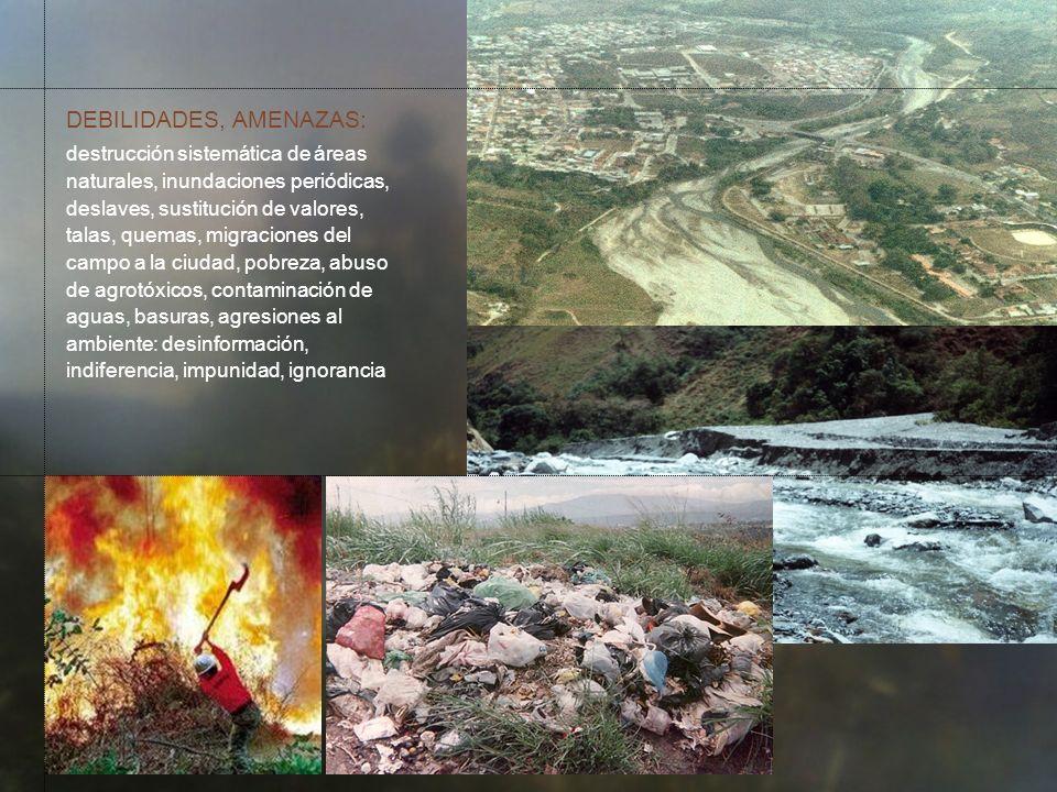 COMPORTAMIENTO DESEABLE Ciudadanos sensibles advierten el peligro.