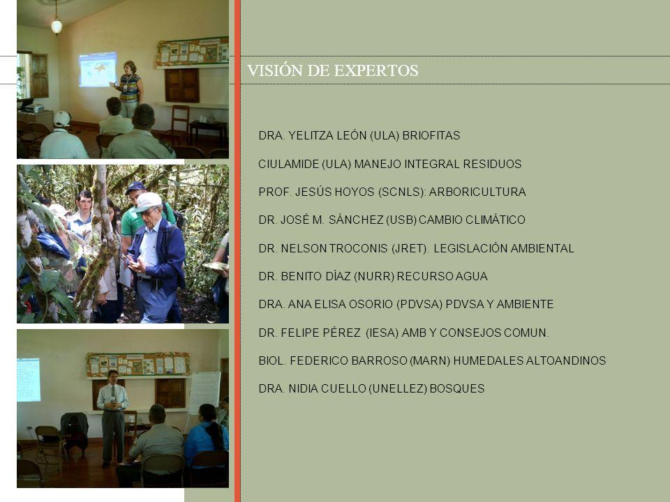 DIVULGACIÓN Micros radiales Micros de televisión Artículos de prensa Exposiciones itinerantes Volantes Mensajes radiales Maquetas Dramatizaciones Experiencias lúdicas