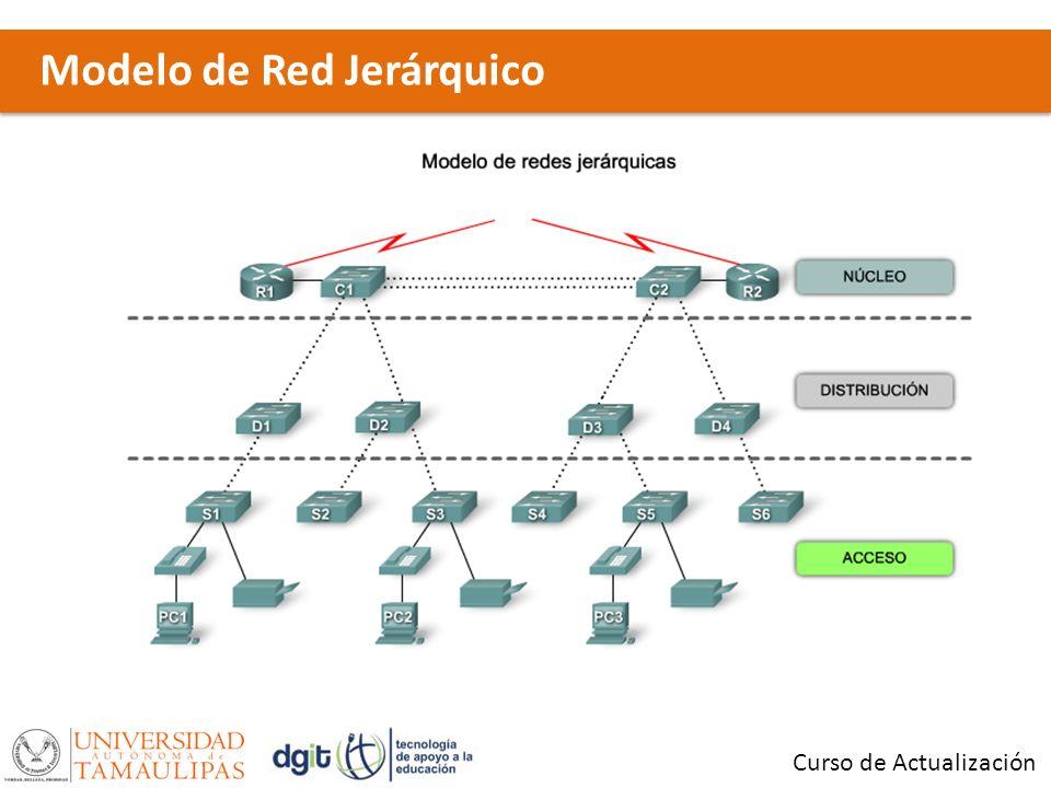 Modelo de Red Jerárquico Curso de Actualización
