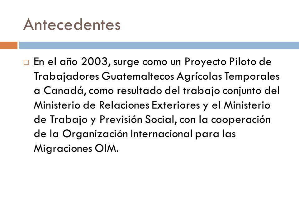 Antecedentes En el año 2003, surge como un Proyecto Piloto de Trabajadores Guatemaltecos Agrícolas Temporales a Canadá, como resultado del trabajo conjunto del Ministerio de Relaciones Exteriores y el Ministerio de Trabajo y Previsión Social, con la cooperación de la Organización Internacional para las Migraciones OIM.