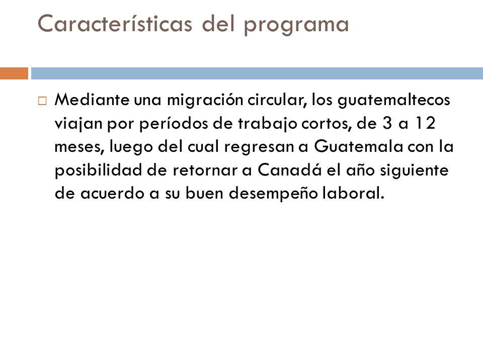 Características del programa Mediante una migración circular, los guatemaltecos viajan por períodos de trabajo cortos, de 3 a 12 meses, luego del cual regresan a Guatemala con la posibilidad de retornar a Canadá el año siguiente de acuerdo a su buen desempeño laboral.