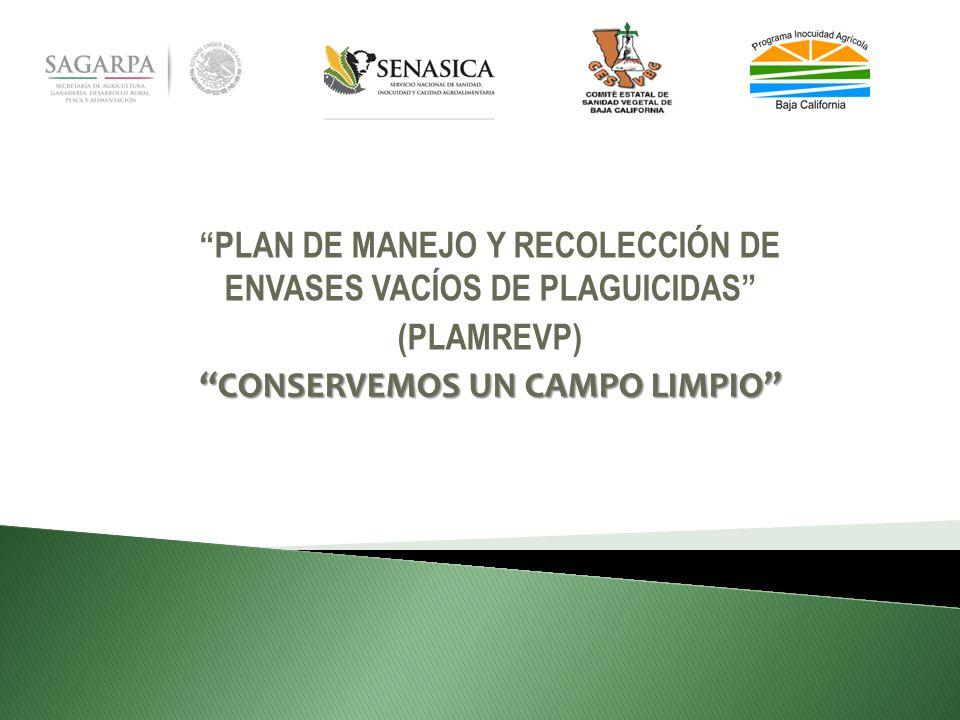 PLAN DE MANEJO Y RECOLECCIÓN DE ENVASES VACÍOS DE PLAGUICIDAS (PLAMREVP) CONSERVEMOS UN CAMPO LIMPIO