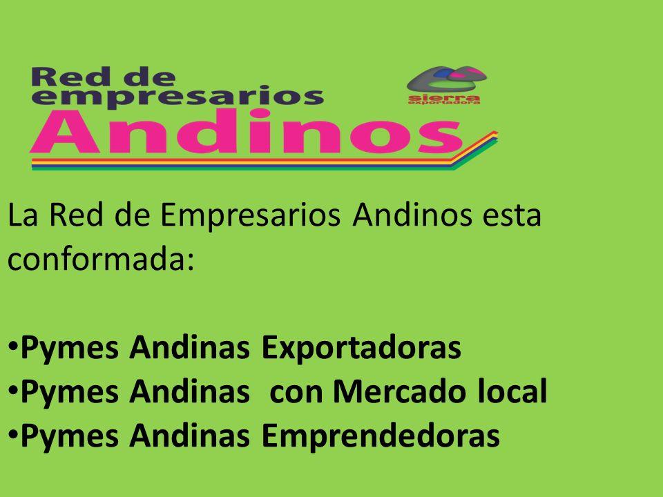 PROCESO DE CONFORMACION DE LA RED DE EMPRESARIOS ANDINOS LA RED DE EMPRESARIOS ANDINOS 8.-Desarrollo de la cooperación Interempresarial 6.1.- Información sobre la cadena productiva del sector al que pertenece.