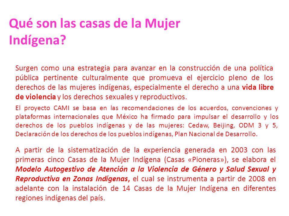 COORDINACIÓN GENERAL DE FOMENTO AL DESARROLLO INDÍGENA Programa Acciones para la Igualdad de Género con Población Indígena COORDINACIÓN GENERAL DE FOMENTO AL DESARROLLO INDÍGENA Programa Acciones para la Igualdad de Género con Población Indígena Retoma las experiencias de los proyectos piloto.