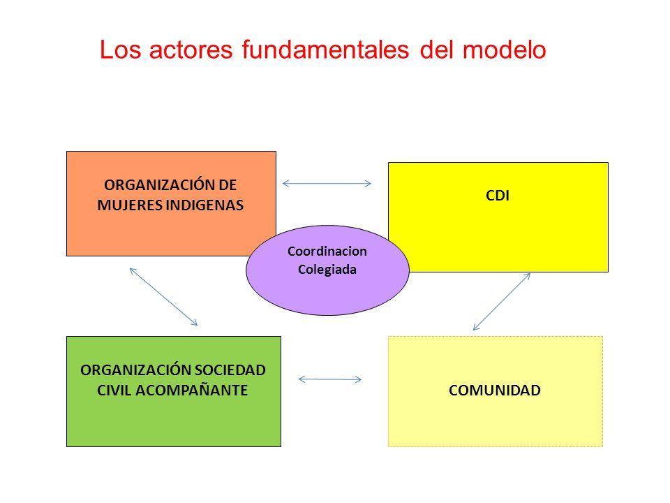 Los actores fundamentales del modelo ORGANIZACIÓN DE MUJERES INDIGENAS CDI ORGANIZACIÓN SOCIEDAD CIVIL ACOMPAÑANTE Coordinacion Colegiada COMUNIDAD