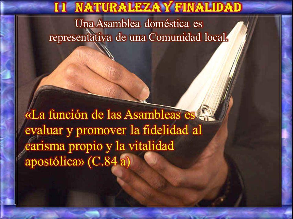 3. Como se trata de una Asamblea oficial prevista por las Constituciones, es lógico que el directorio tenga un estilo jurídico, especialmente acerca d