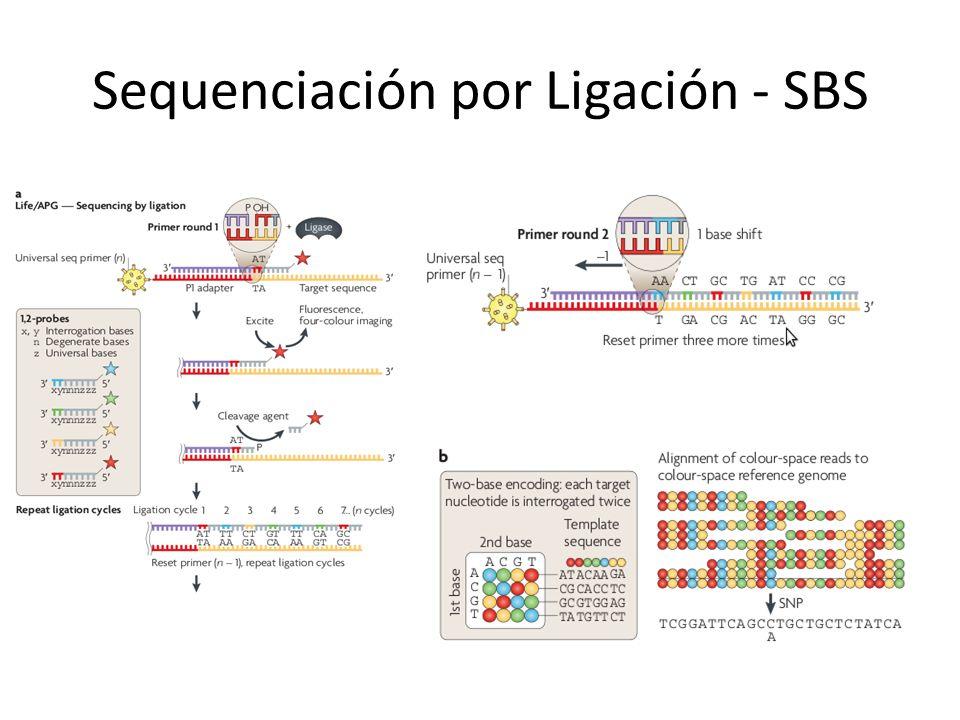 Sequenciación por Ligación - SBS