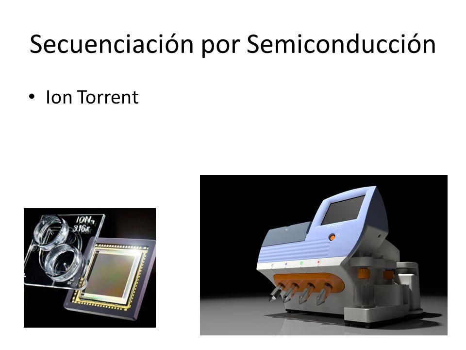 Secuenciación por Semiconducción Ion Torrent