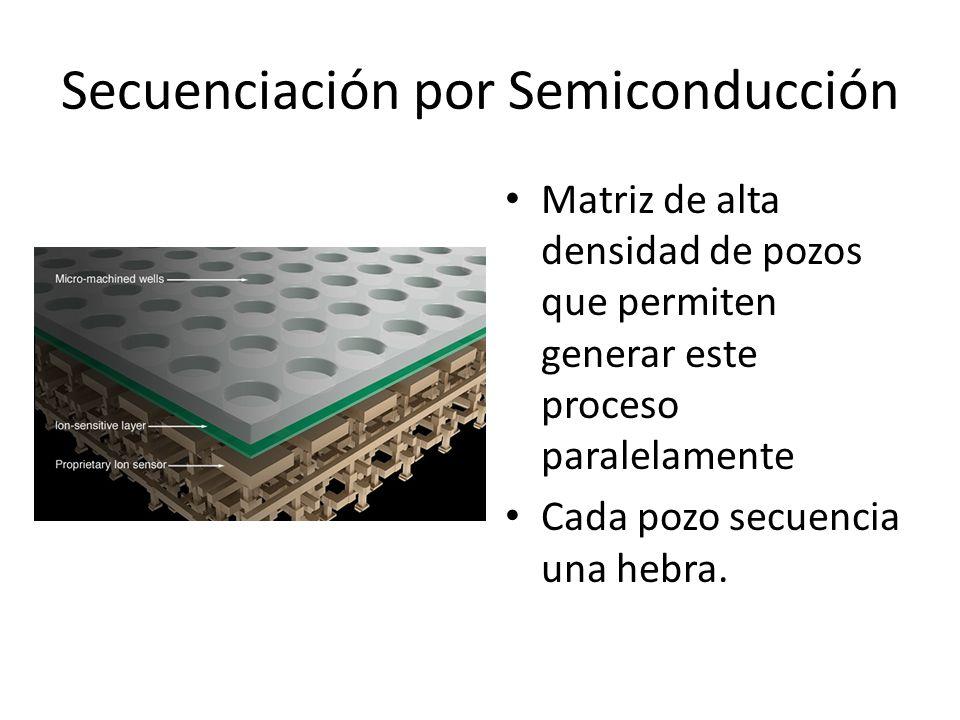 Secuenciación por Semiconducción Matriz de alta densidad de pozos que permiten generar este proceso paralelamente Cada pozo secuencia una hebra.