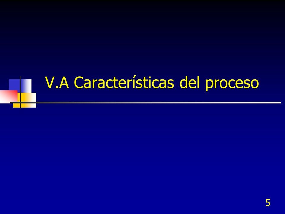 5 V.A Características del proceso