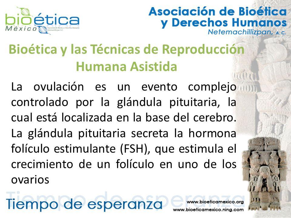 Bioética y las Técnicas de Reproducción Humana Asistida La ovulación es un evento complejo controlado por la glándula pituitaria, la cual está localiz