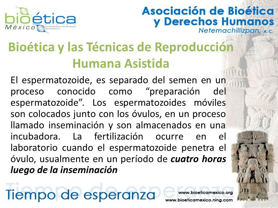 Bioética y las Técnicas de Reproducción Humana Asistida El espermatozoide, es separado del semen en un proceso conocido como preparación del espermato