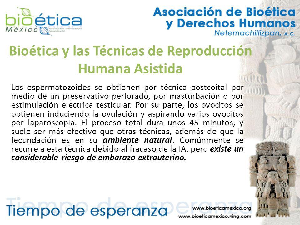 Bioética y las Técnicas de Reproducción Humana Asistida Los espermatozoides se obtienen por técnica postcoital por medio de un preservativo perforado,