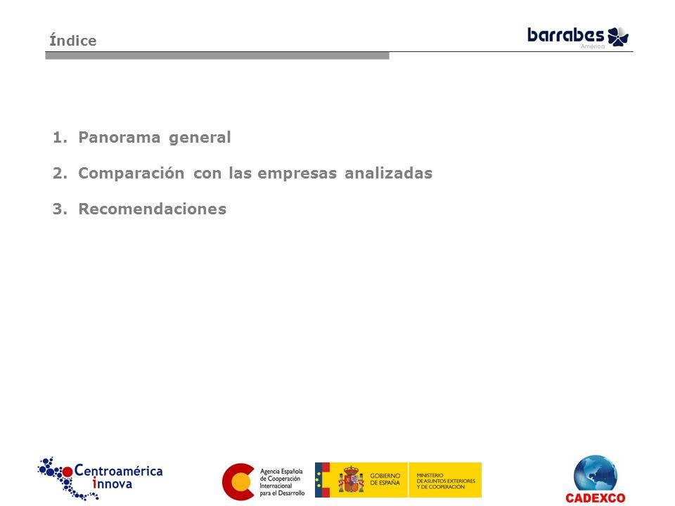 1.Panorama general 2.Comparación con las empresas analizadas 3.Recomendaciones Índice