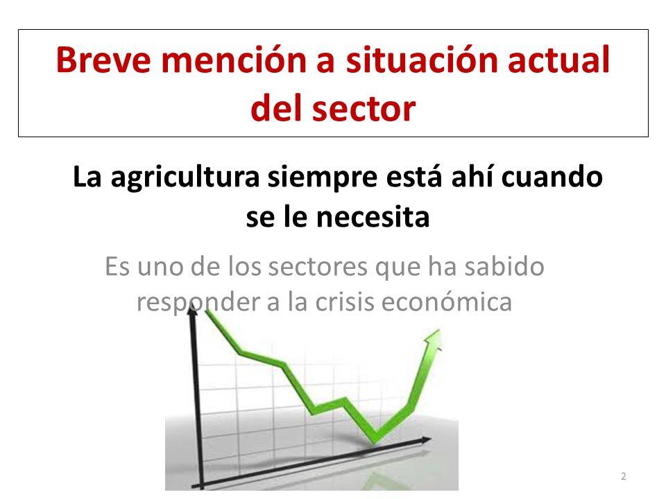 La agricultura siempre está ahí cuando se le necesita Es uno de los sectores que ha sabido responder a la crisis económica 2 Breve mención a situación actual del sector