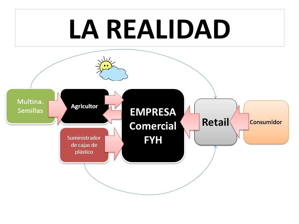 EMPRESA Comercial FYH EMPRESA Comercial FYH Retail Consumidor Agricultor Multina.