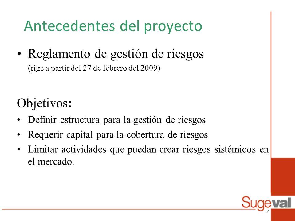 Antecedentes del proyecto Reglamento de gestión de riesgos (rige a partir del 27 de febrero del 2009) Objetivos: Definir estructura para la gestión de