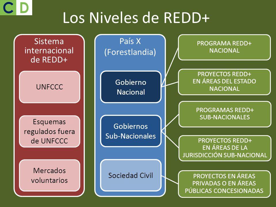 Los Niveles de REDD+ Sistema internacional de REDD+ País X (Forestlandia) Gobierno Nacional Gobiernos Sub-Nacionales Sociedad Civil UNFCCC Esquemas re