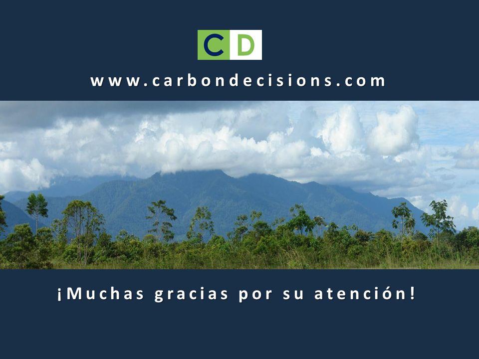 www.carbondecisions.com ¡Muchas gracias por su atención!