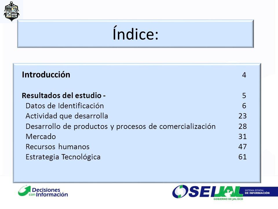 Índice: Introducción 4 Resultados del estudio - 5 Datos de Identificación 6 Actividad que desarrolla23 Desarrollo de productos y procesos de comercialización28 Mercado31 Recursos humanos 47 Estrategia Tecnológica61